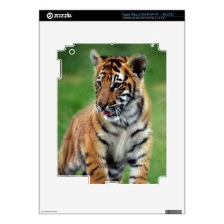 Cute baby Tiger cub Skin For iPad 3