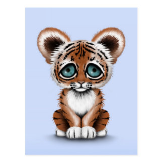 Cute Baby Tiger Cub with Blue Eyes on Light Blue Postcard
