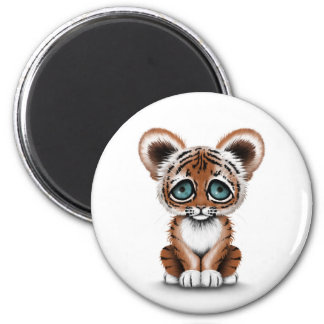 Cute Baby Tiger Cub with Blue Eyes on White Magnet