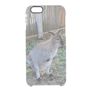 Cute Baby Wallaby Animal Iphone6 Deflector Cases