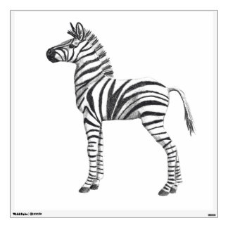 Cute Baby Zebra Drawing Room Graphic