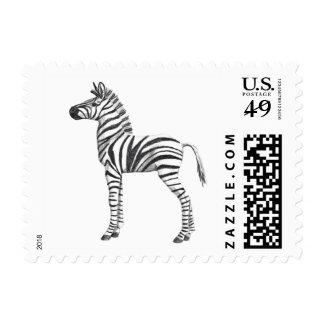 Cute Baby Zebra Drawing Stamp