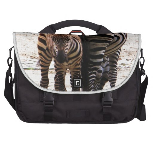 Cute Baby Zebra picture Laptop Bag