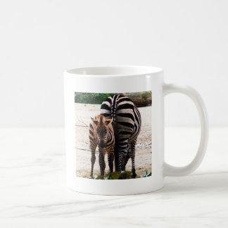 Cute Baby Zebra picture Classic White Coffee Mug