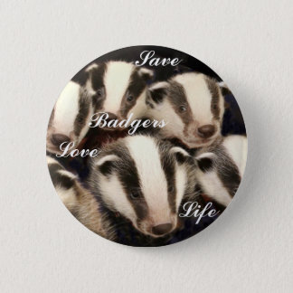 Cute Badger Cubs Button