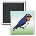 Cute Barn Swallow Refrigerator Magnets
