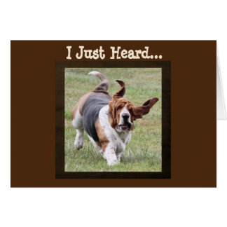 Cute Basset Hound on Funny Birthday Card with Cake