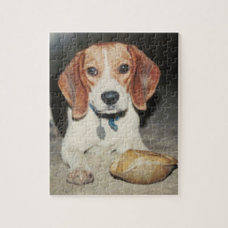 Cute Beagle Dog and His Pet Turtle Puzzle