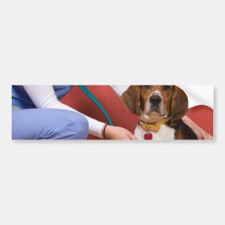 Cute Beagle Dog Getting a Veterinary Checkup Bumper Stickers
