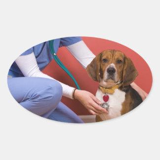 Cute Beagle Dog Getting a Veterinary Checkup Oval Sticker