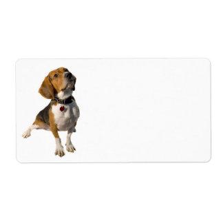 Cute Beagle Dog Custom Shipping Label