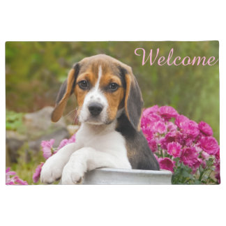Cute Beagle Dog Puppy in Milk Churn  Entry Welcome Doormat