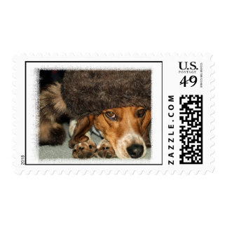 Cute Beagle Dog with Coonskin Hat photo Postage