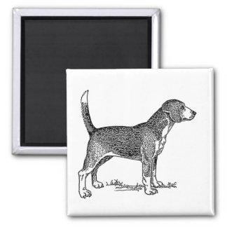 Cute Beagle Elegant Dog Drawing Magnet
