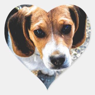 Cute Beagle Heart Sticker