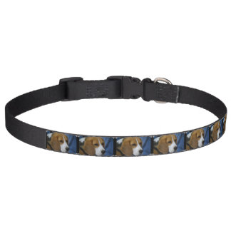 Cute Beagle Pet Collar
