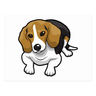 Cute Beagle Postcard