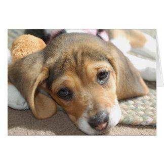 Cute Beagle Puppy Birthday Card