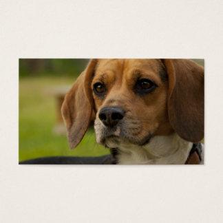 Cute Beagle Puppy Dog Business Card