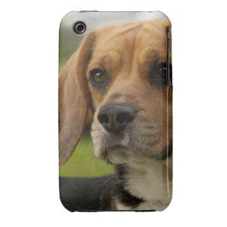 Cute Beagle Puppy Dog iPhone 3 Covers