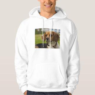 Cute Beagle Puppy Dog Hoodie