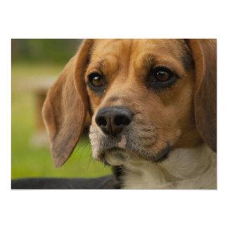 Cute Beagle Puppy Dog 5.5x7.5 Paper Invitation Card