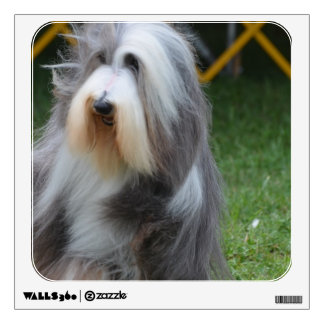 Cute Bearded Collie Wall Stickers