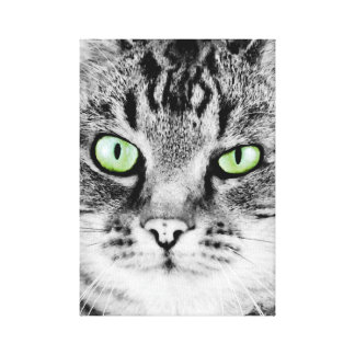 Cute beautiful cat with green eyes portrait canvas print
