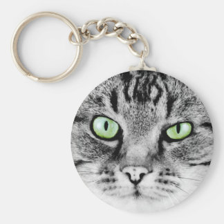 Cute beautiful cat with green eyes portrait key chain