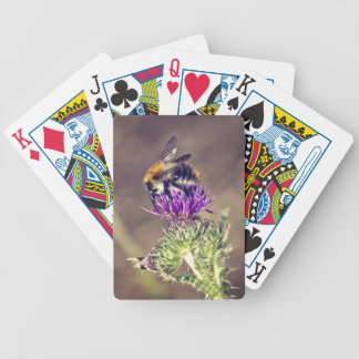 Cute bee on a thistle bicycle playing cards