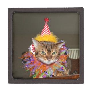 Cute Bengal Cat Clown Keepsake Box