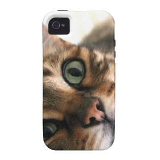 Cute Bengal Cat in Bed Picture iPhone 4 Cases