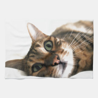 Cute Bengal Cat in Bed Picture Kitchen Towel