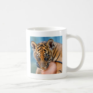 Cute Bengal Tiger Cub Coffee Mug