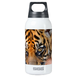 Cute Bengal Tiger Cub Insulated Water Bottle