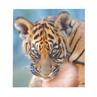 Cute Bengal Tiger Cub Memo Note Pad