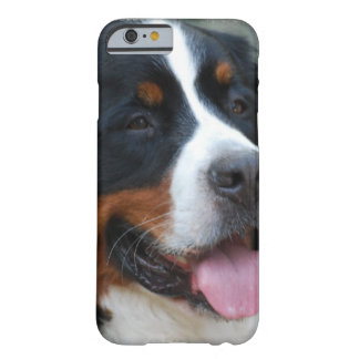 Cute Bernese Mountain Dog Barely There iPhone 6 Case