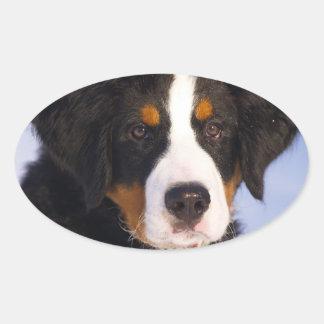 Cute Bernese Mountain Dog Puppy Picture Oval Sticker
