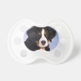 Cute Bernese Mountain Dog Puppy Picture Pacifier
