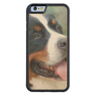 Cute Bernese Mountain Dog Carved® Maple iPhone 6 Bumper Case