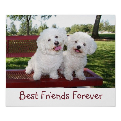 cute best friends forever poster print zazzle. Black Bedroom Furniture Sets. Home Design Ideas
