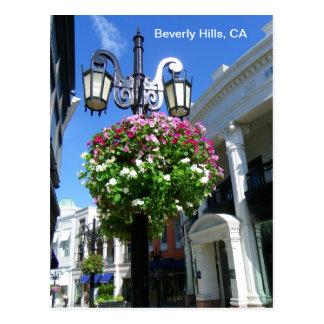 Cute Beverly Hills Postcard! Postcard