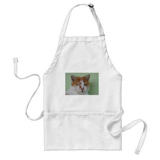 Cute Bi Color Cat Winking Adult Apron