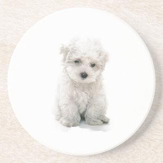 Cute Bichon Frise Coaster