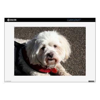 "Cute bichon frise dog skin for 15"" laptop"
