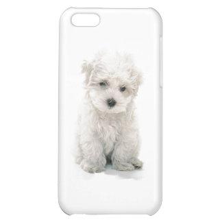 Cute Bichon Frise iPhone 4 Case