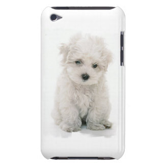 Cute Bichon Frise iTouch Case Barely There iPod Case