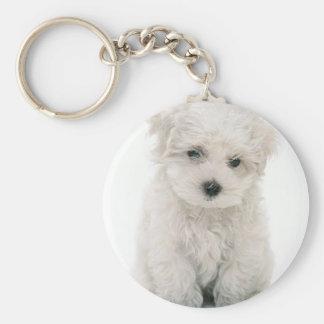 Cute Bichon Frise Keychain