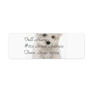 Cute Bichon Frise Mailing Label