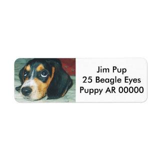 Cute Big Eyes Beagle Puppy Label